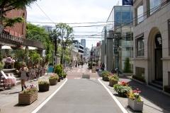 Harajuku-Cat-street-02