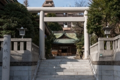 Tokyo_Tenso-Shrine-2